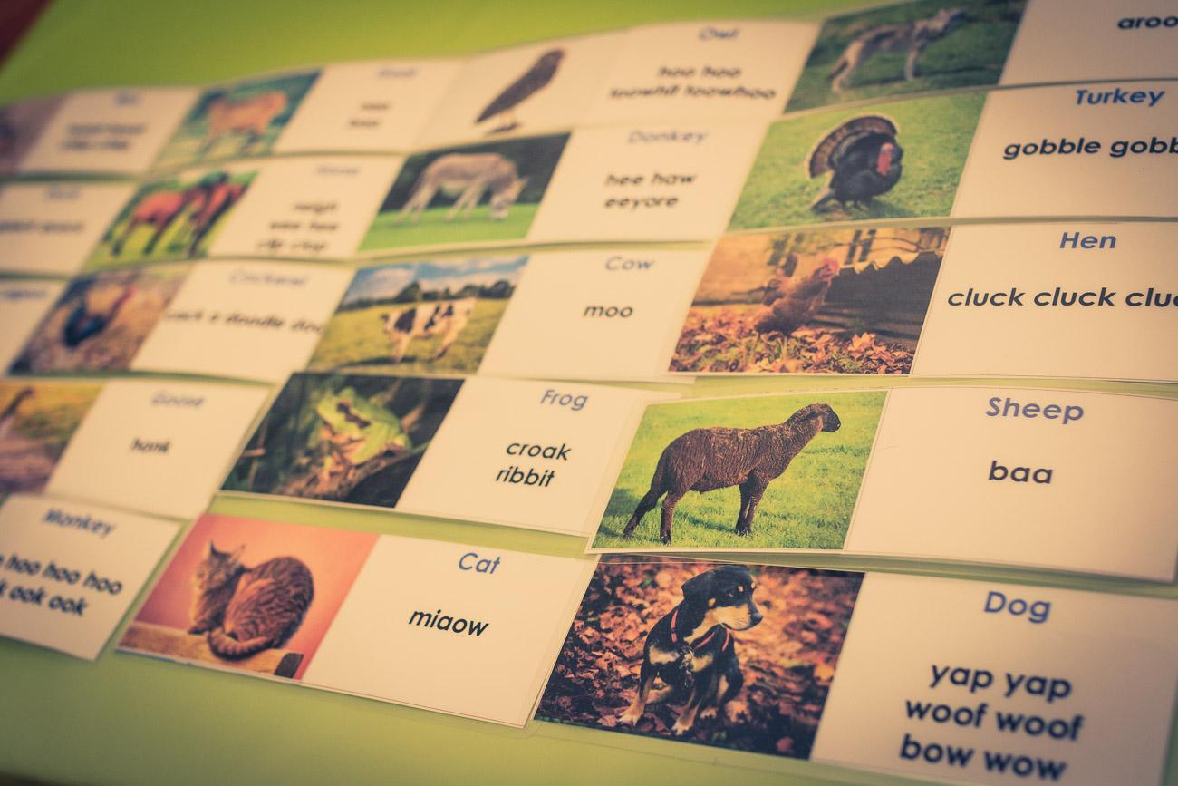 Do druku dla dzieci: dźwięki zwierząt po angielsku. Dla rodzica: wokabularz zwierzęcy