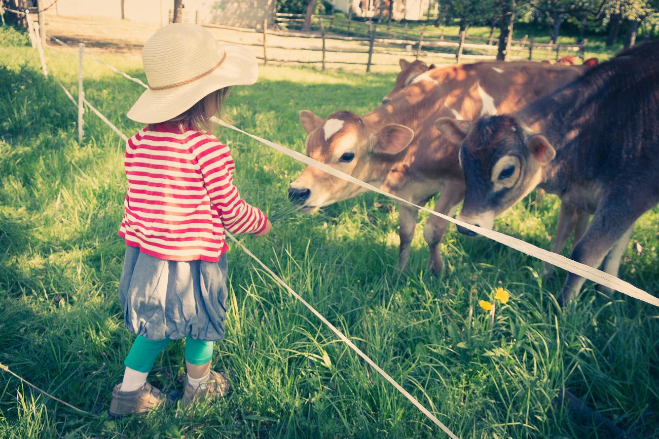 Co dały cztery lata wychowania dwujęzycznego? jakie były moje obawy? jak reaguje otoczenie? co potrafi dwujęzyczne dziecko?