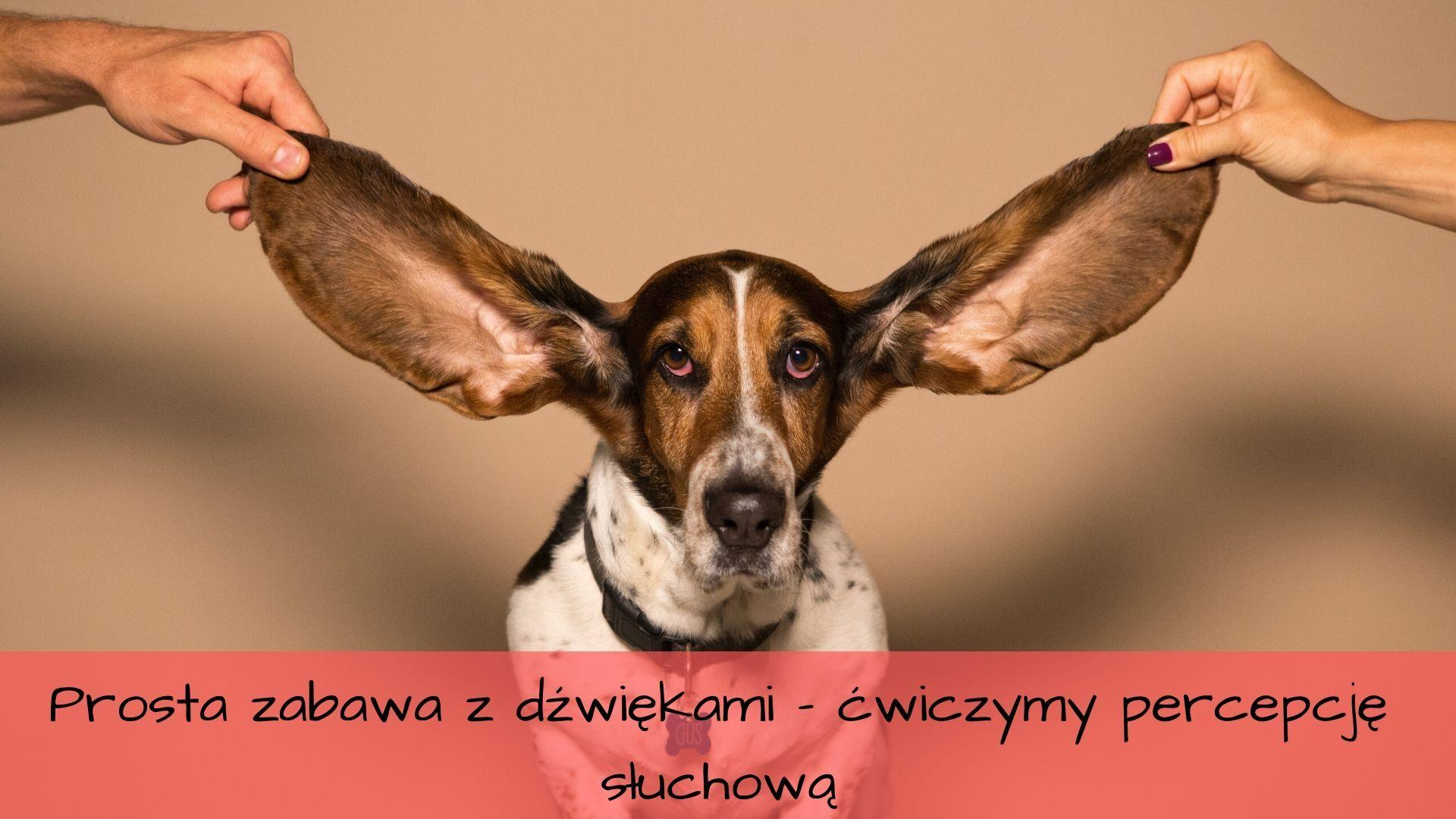 Percepcja słuchowa i rozwijanie słownictwa - jak szybko i za darmo przygotować zabawy dla dzieci?