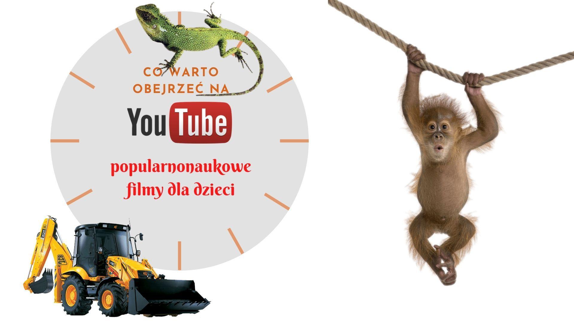 Co obejrzeć na YouTube - popularnonaukowe i przyrodnicze filmy dla dzieci